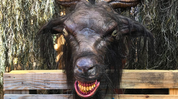 A haunting goat can be found at SCarowinds' Halloween Events