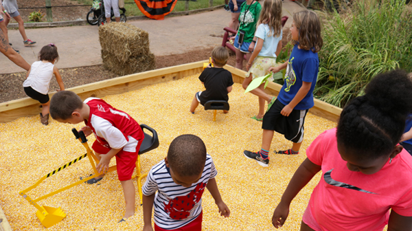 Children playing together at Carowinds' Great Pumpkin Fest