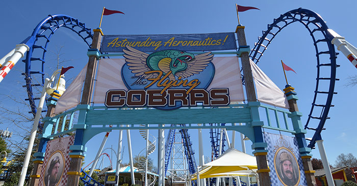 Carowinds Quiz: Which Roller Coaster Are You? Results Flying Cobras
