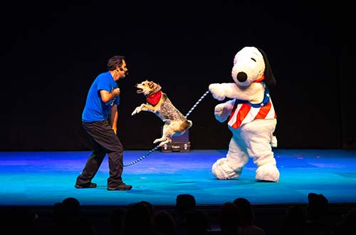 Snoopy's All-Star Stunt Dogs