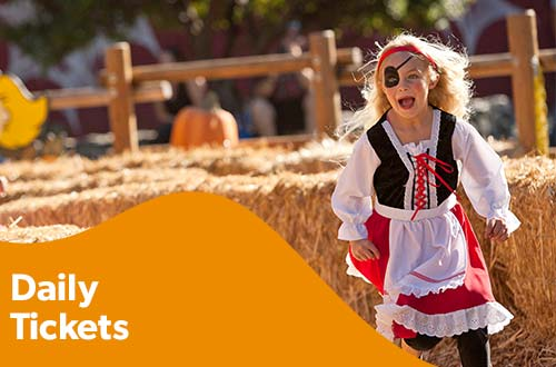 Daily Tickets to Carowinds Amusement Park & Halloween Events