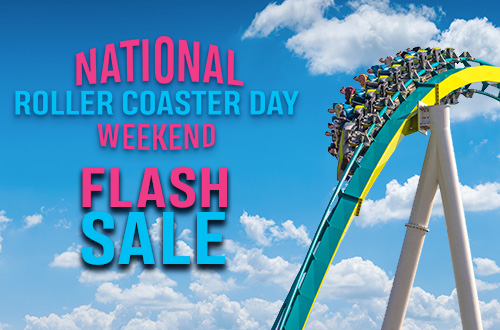 2019 Season Pass Flash Sale