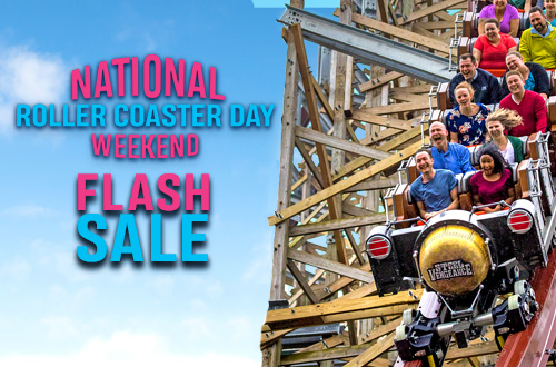 Platinum Pass Flash Sale