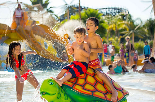 Knott's Soak City Slides and Attractions