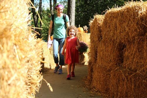 Child in a maze at Kings Dominion's Kids Halloween Event