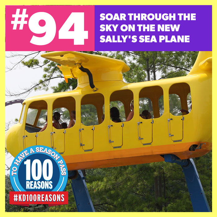 Soar Through the Sky On the New Sally's Sea Plane