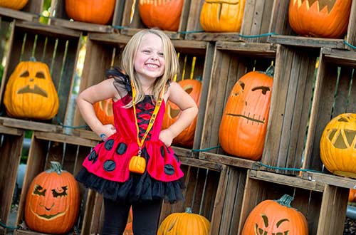 Unlimited Great Pumpkin Fest