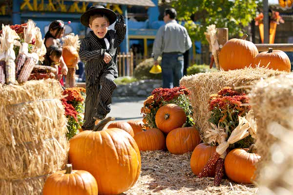Things to do with Family in Kansas City Fall